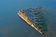 Limestone rock in Lake Winnipeg<br /> Hecla Provincial Park<br /> Manitoba<br /> Canada