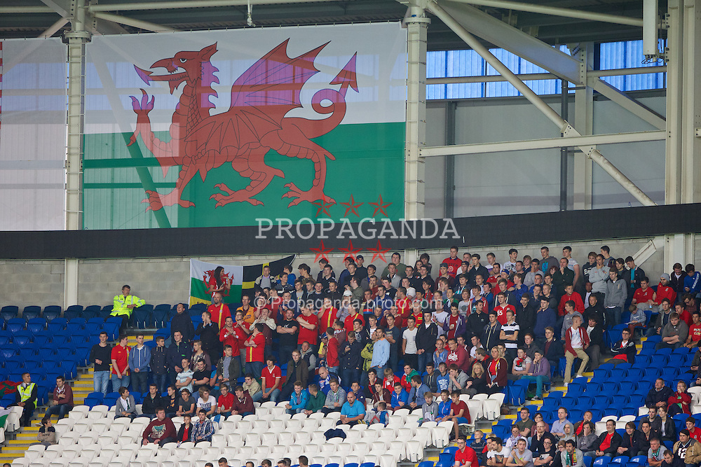 CARDIFF, WALES - Wednesday, August 14, 2013: Wales supporters during an International Friendly against Republic of Ireland at the Cardiff City Stadium. (Pic by David Rawcliffe/Propaganda)