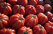 """Rennes, FRANCE. General View GV. Rennes weekly regional market. Brittany,<br /> <br /> """"Tray of Tomatos on Display """", sold from stalls in the open and covered market  <br /> <br /> Saturday  26/04/2014 <br /> <br /> © Peter SPURRIER, <br /> <br /> NIKON CORPORATION  NIKON D700  f1.4  1/5000sec  24mm  3.6MB"""