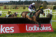 Ladbrokes Ireland Boyne Hurdle at Navan Race Course, 14th February 2016<br /> Robbie Power on Ttebbob at Navan clears the last ahead of Willie Mullins trained Tell Us More, but subsequently settled for 2nd place.<br /> Photo: David Mullen / www.quirke.ie ©John Quirke Photography, Unit 17, Blackcastle Shopping Cte. Navan. Co. Meath. 046-9079044 / 087-2579454.