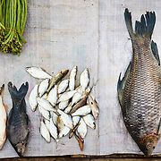 Fish and bunches of greens at morning market in Luang Prabang