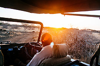 A safari guide drives a jeep through the bush in Kenya.