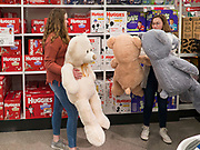 "28 NOVEMBER 2019 - ANKENY, IOWA: Shoppers at the Target store in Ankeny, Iowa, look at 3 foot Teddy Bears. The Teddy Bears were one of the store's ""door buster"" items. ""Black Friday"" is the unofficial start of the Christmas holiday shopping season and has traditionally thought to be one of the busiest shopping days of the year. Brick and mortar retailers, like Target, are facing increased pressure from online retailers this year. Many retailers have started opening on Thanksgiving Day. Target stores across the country opened at 5PM on Thanksgiving to attract shoppers with early ""Black Friday"" specials.     PHOTO BY JACK KURTZ"