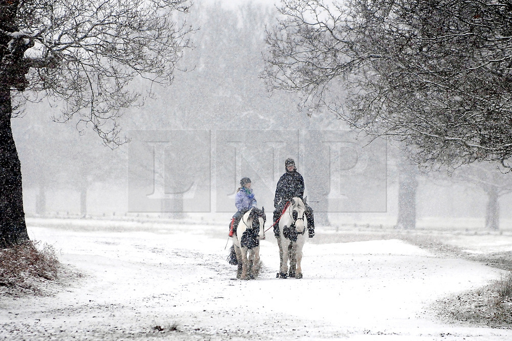 UNITED KINGDOM - RICHMOND Two horse riders in snow fall in Richmond Park, London 16 DECEMBER 2009