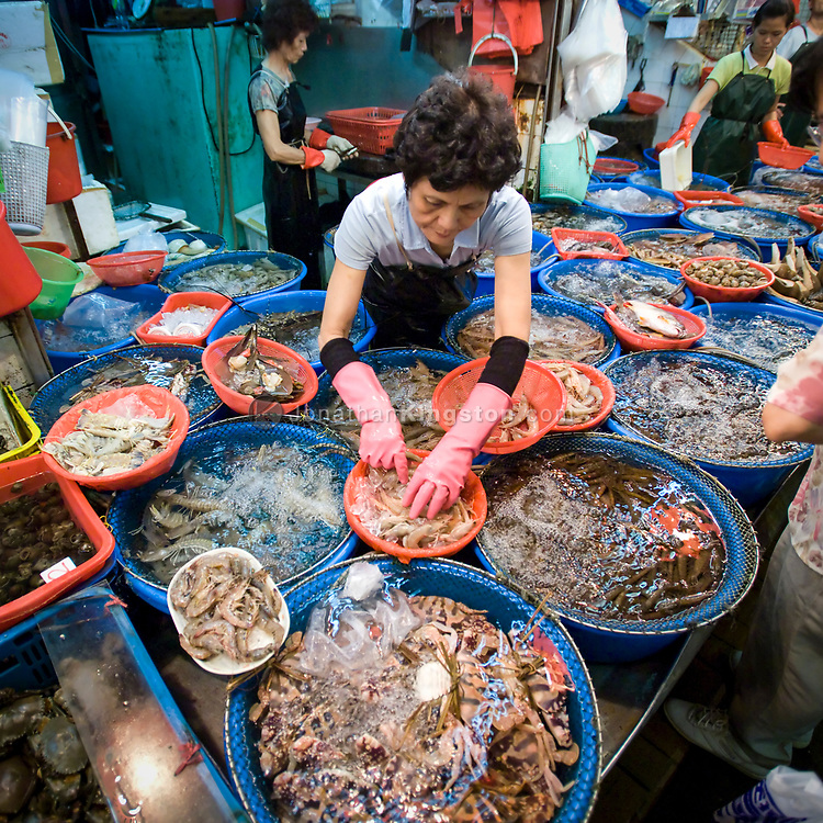 A seafood market in central Hong Kong SAR, China.  Hong Kong Special Administrative Region is one of two special administrative regions of the People's Republic of China.  Hong Kong is a leading financial centre in China and is the wealthiest urban centre in China.