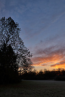 Autumn Backyard Sunrise Panorama. Three of nine images taken with a Leica CL camera and 18 mm f/2.8 lens (ISO 200, 18 mm, f/11, 1/60 sec). Raw images processed with Capture One Pro and the composite created using AutoPano Giga Pro.