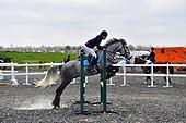 Class 02 - Pony British Novice Open - 85cm