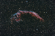 Der Cirrusnebel, auch Schleiernebel genannt ist der Überrest einer gewaltigen Sternexplosion (Supernova) im Sternbild Schwan. Er besteht aus einer verstreuten Ansammlung von Emissionsnebeln und Reflexionsnebeln. Seine Entfernung wird mit etwa 1500 Lichtjahren angegeben. Diese Aufnahme zeigt den westlichen Teil des Cirrus Nebels. Aufnahmedaten: Luminanz: 14 x 600 s @ 800ASA Aufnahmeoptik: Takahashi FS102 NSV f/6 Montierung: Losmandy G11 + Littlefoot Kamera: Canon EOS 20Da Autoguiding: Webcam guiding @ Vixen ED81 + 2x barlow Bildbearbeitung: ImagesPlus, PS, Neat Image