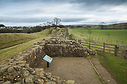 view of the Hadrian's wall near Brampton. ruins of Willowford Wall, Turrets and Bridge