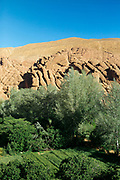 Dades Gorge 'Monkey Finger' wall formation, Dades Valley, Southern Morocco 2016-05-13.<br /> <br />  The 'Monkey Fingers' are an unusal and spectacular formation of prehistoric rock within the Dades Gorge walls. <br /> <br /> There are many spectular trekking routes through the gorge throughout the Dades Valley.