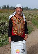 Uyghur cotton producer in the fields. Hotan, Xinjiang Uyghur autonomous region, China.