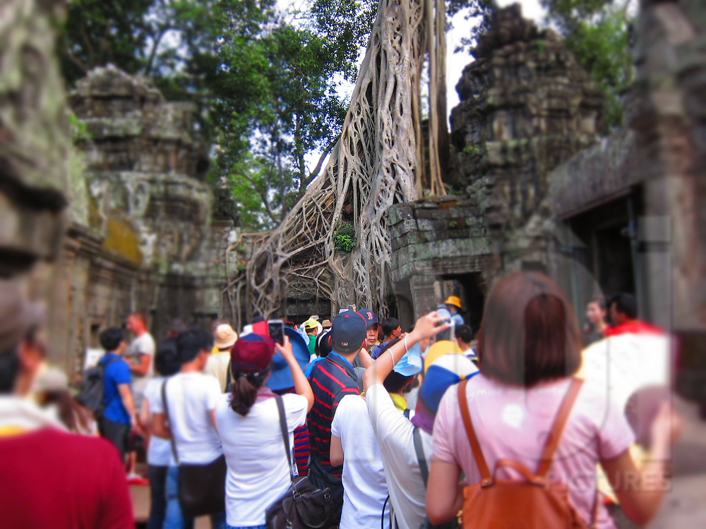 Large group of tourists visiting famous ancient tree of Ta Prohm temple, Angkor, Siem Reap, Cambodia, Southeast Asia