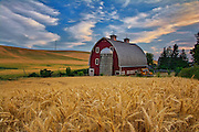 Red Barn, Wheat Fields, WA.