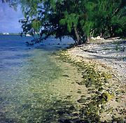 Beach and shoreline, Grand Cayman, Cayman Islands,