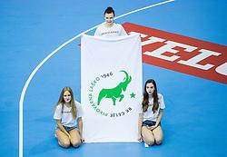 Logo of Celje PL during handball match between RK Celje Pivovarna Lasko (SLO) and Rhein-Neckar Loewen (GER) in Round 6 of EHF Champions League 2014/15, on November 23, 2014 in Arena Zlatorog, Celje, Slovenia. Photo by Vid Ponikvar / Sportida