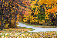 The roadway is filled with autumn color at Brown County State Park near Nashville, Indiana, USA