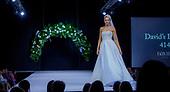 David's Bridal (Oct 17)
