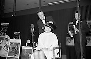 28/3/1966<br /> 3/18/1966<br /> 28 March 1966<br /> <br /> A record number of Irish Hairdressers attended the demonstration by L'Oreal of Paris at the Intercontinental Hotel, Dublin . The 15 Models were all Irish Girls, They showed new hair colours and styles by L'Oreal and styles by British Cup Hairdressing Team Captian Peter Webb<br /> <br /> Pictured is Peter Webb (Captain of the British Cup Hairdressing team) demonstrating one of his Hair styles