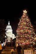 Christmas Tree at Texas Capitol, Austin.