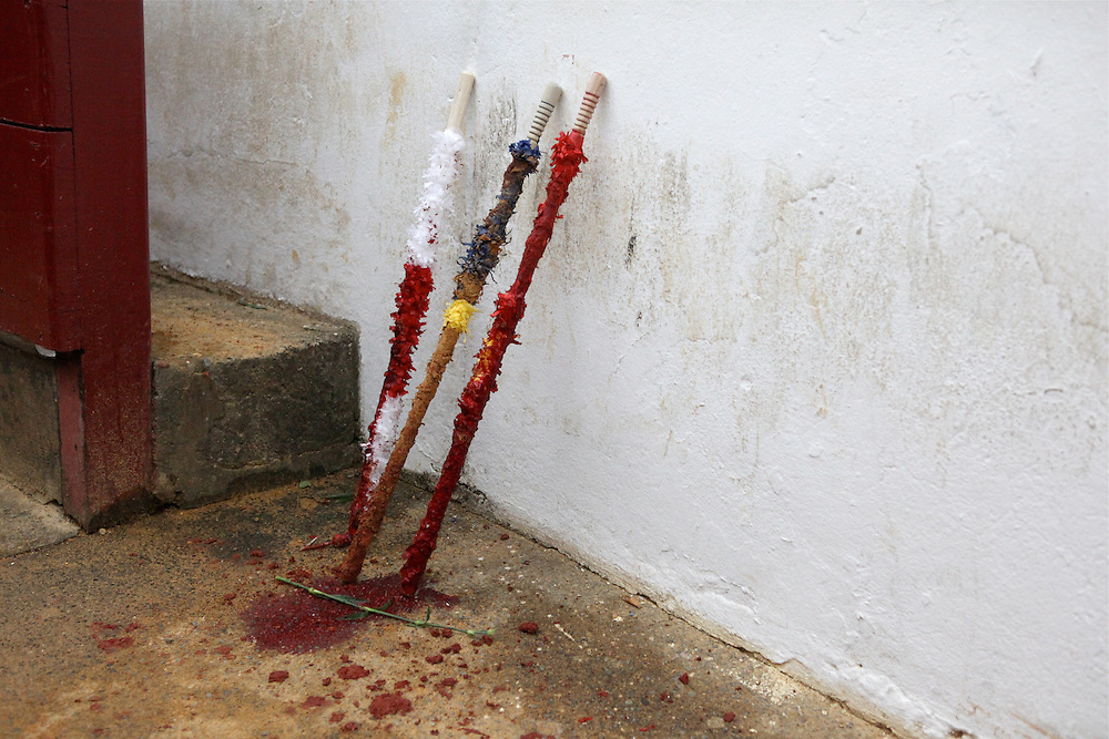 Bloodied, barbed sticks (banderillas) used by the banderillero are left beside a flower stem after a bullfight.