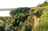 Anglezarke Quarry recolonised with native flora