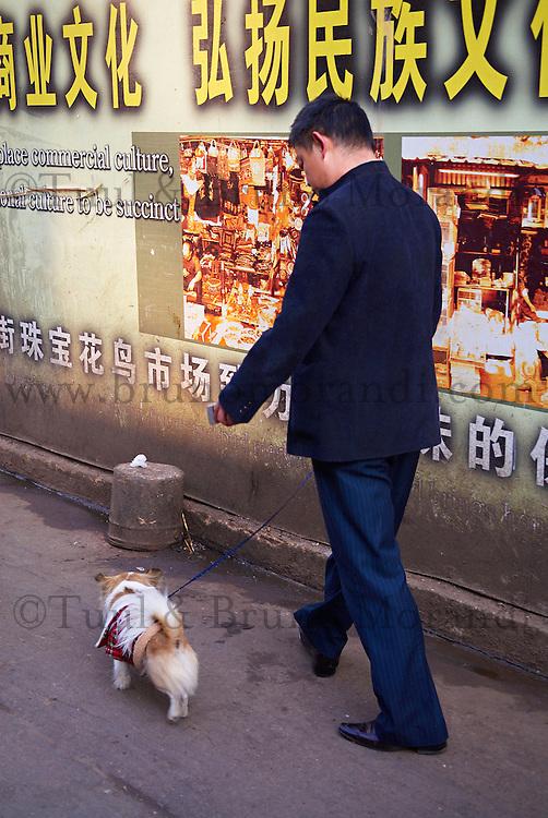 Chine, Yunnan, Kunming, capitale de la province. // China, Yunnan, Kunming, province capital.
