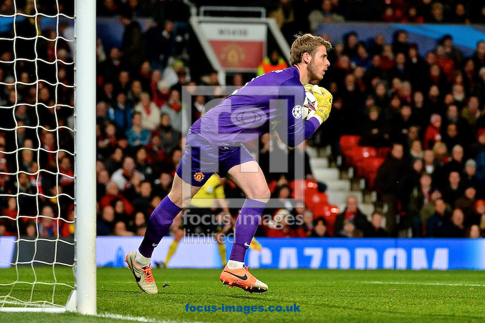 Picture by Ian Wadkins/Focus Images Ltd +44 7877 568959<br /> 10/12/2013<br /> David De Gea of Manchester United claims the ball during the UEFA Champions League match at Old Trafford, Manchester.