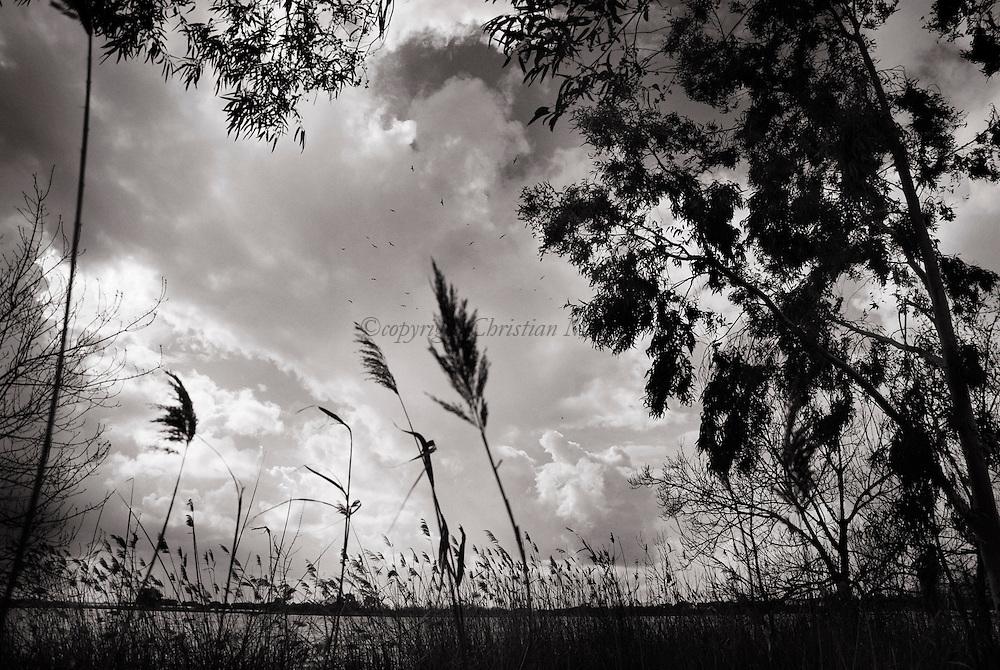 ITALY, Fondi: Fondi's lake.©Christian Minelli