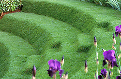 Grass steps / terracing<br /> A Theatrical Garden<br /> The Evening Standard. Design: Xa Tollemache, Chelsea 2001
