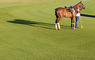 Action during the Qatar Goodwood Festival polo match at Cowdray. Day Three.<br /> Picture date: Thursday July 30, 2015.<br /> Photograph by Christopher Ison &copy;<br /> 07544044177<br /> chris@christopherison.com<br /> www.christopherison.com