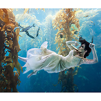 National APA award winner in the Fashion and Beauty Category.<br />