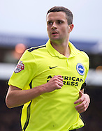 Jamie Murphy of Brighton and Hove Albion during the Sky Bet Championship match at Turf Moor, Burnley<br /> Picture by Russell Hart/Focus Images Ltd 07791 688 420<br /> 22/11/2015
