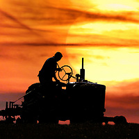 Classic old tractor Sunset Photographs of the Isle of Wight by photographer Patrick Eden photography photograph canvas canvases