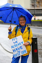 © Licensed to London News Pictures. 21/10/2019. London, UK. An anti-Brexit protestor holds a placard outside the Houses of Parliament in Westminster as the Speaker of the House of Commons JOHN BERCROW blocked the vote on Prime Minister BORIS JOHNSON'S EU deal today. Photo credit: Dinendra Haria/LNP