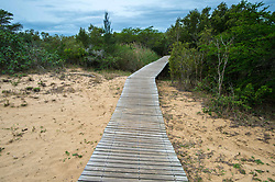September 5, 2015 - Saint Lucia, South Africa - Wooden boardwalk leading from the beach into the woodlands in Saint Lucia, Kwazulu-Natal, South Africa - iSimangaliso Wetland Park (Credit Image: © Edwin Remsberg / Vwpics/VW Pics via ZUMA Wire)