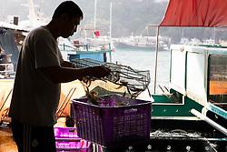 Man with basket of fresh shrimp at fish market in Hong Kong, China.