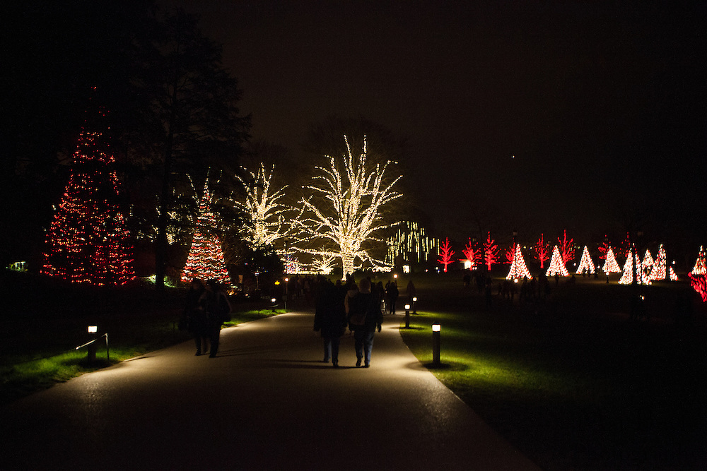 Holiday Lights at Longwood Gardens in Kennett Square, PA on Wednesday December 12, 2012. (photo / Mat Boyle)