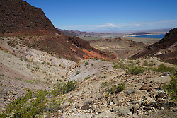 Lake Mead Area - Early Summer