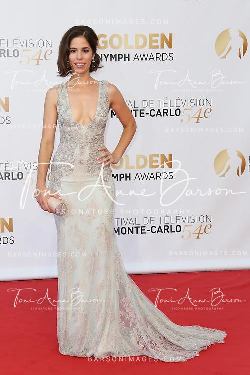 MONTE-CARLO, MONACO - JUNE 11:  Ana Ortiz attends the Closing Ceremony and Golden Nymph Awards of the 54th Monte Carlo TV Festival on June 11, 2014 in Monte-Carlo, Monaco.  (Photo by Tony Barson/FilmMagic)