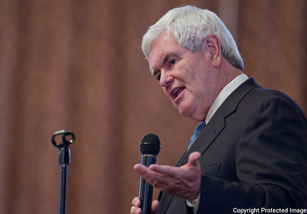 Former House Speaker Newt Gingrich speaks to a gathering of Iowans for Tax Relief at the Sky Event Centre in Waterloo, Iowa on Thursday September 9, 2010. (Stephen Mally for The New York Times)