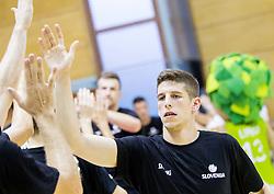 Aleksej Nikolic of Slovenia during friendly basketball match between National teams of Slovenia and Georgia in day 2 of Adecco Cup 2014, on July 25, 2014 in Dvorana OS 1, Murska Sobota, Slovenia. Photo by Vid Ponikvar / Sportida.com