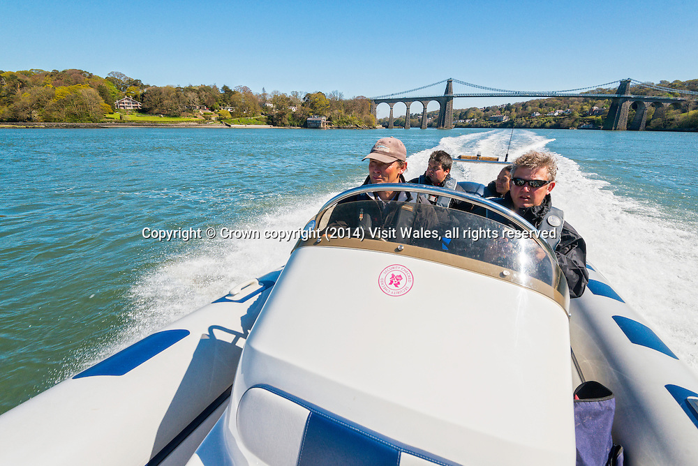 Boat (RIB) ride on Menai Strait<br /> Passing Menai Suspension Bridge<br /> Anglesey<br /> North<br /> Boat Trips<br /> Activities and Sports