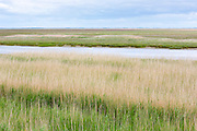 Vista view of grassland and marsh by the Wadden Sea in the North Sea from Fano Island, South Jutland, Denmark