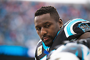 November 13, 2016: Carolina Panthers vs Kansas City Chiefs. Thomas Davis