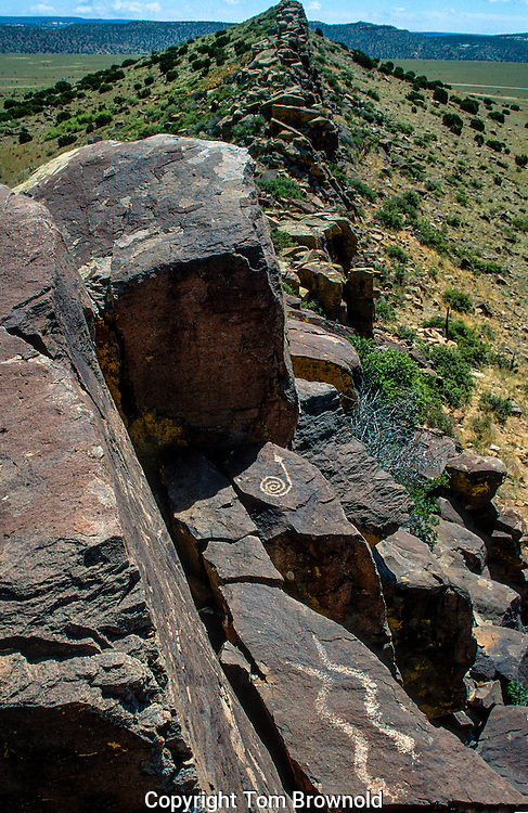 Petroglyphs on Basalt