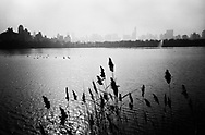 The Reservoir in Central Park, New York City