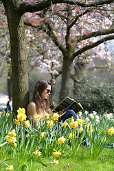 Student Chiara Spadafora enjoys the warm sunny weather surrounded by spring flowers in London's Regent Park.<br /> Tuesday, 1st April 2014. Picture by Ben Stevens / i-Images