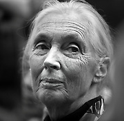 British Primatologist Jane Goodall on a visit to Beijing.