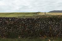 Distinctive stone wall in Irish countryside. Copyright 2019 Reid McNally.
