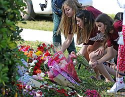At 2:21 p.m., Marjory Stoneman Douglas students Jessica Wainland, Reagan Borne and Aria Siccone lay flowers Thursday, February, 14, 2019, at a memorial at the school to mark the time when 17 students and teachers were killed in a mass shooting last year on Valentine's Day. Photo by Charles Trainor Jr./Miami Herald/TNS/ABACAPRESS.COM